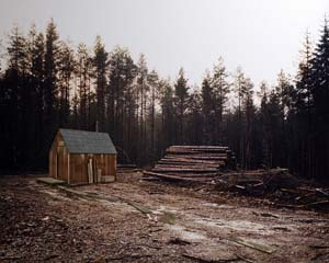 alex_hartley-waiting_for_daylight_to_end_kaczynski_cabin
