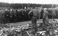 dachau-1945