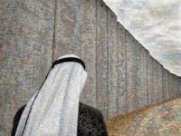 joan_fontcuberta-googlegramma-the_wall