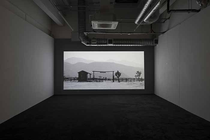 John Skoog. Shadowland. Installation View