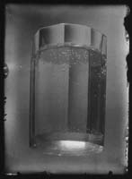 josef_sudek-nature_morte