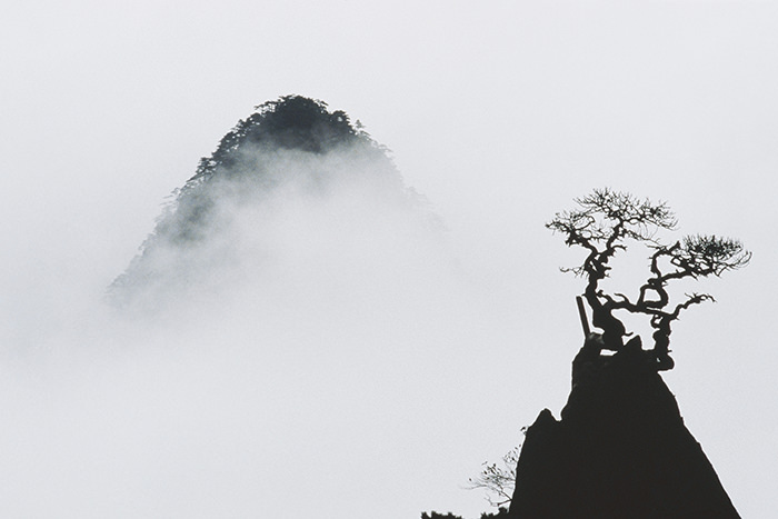 © Marc Riboud. Huangshan, 1985. On the right, the pine named Flower-Formed-on-the-tip-of-a-Dream-Paintbrush. On the left, the Sublime Peak