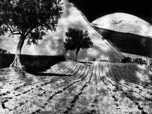 La grande luna, fotografia di Mario Giacomelli in Maestri della fotografia