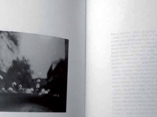 fotografia e scrittura