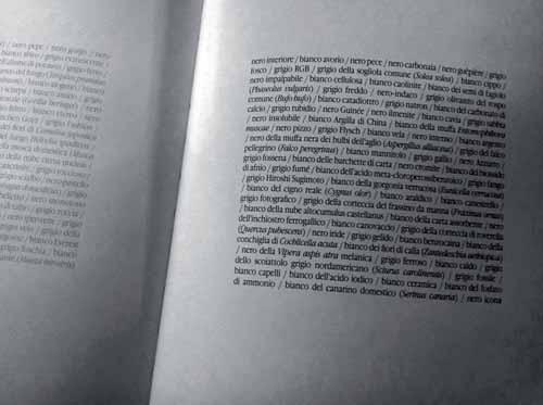 paolo_mussat-sartor-nicola_ponzio-scanning-3