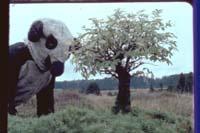 © Peter Fischli & David Weiss. The Right Way, 1983. 16mm film, 55 min