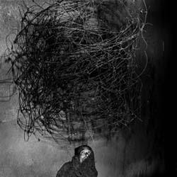 roger_ballen-twirling_wires