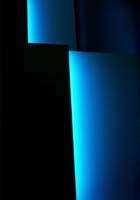 silvio_wolf-black_and_blue