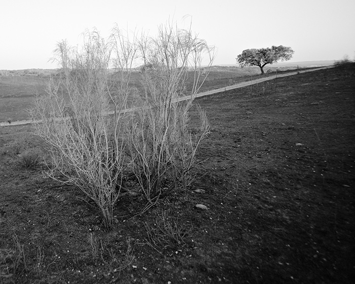 © Vincent Everarts. Alentejo-1, Portugal, 2014. 14x17.5cm. Edition: 7